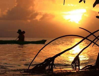 Visite guidée de la mangrove en kayak